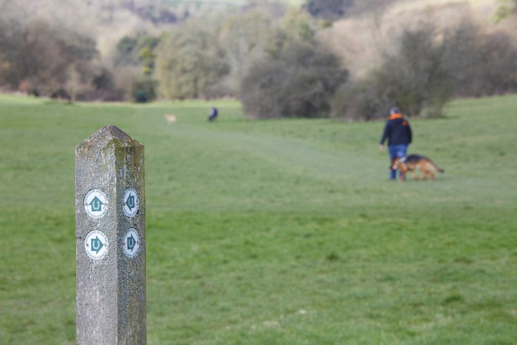 Farthing Downs